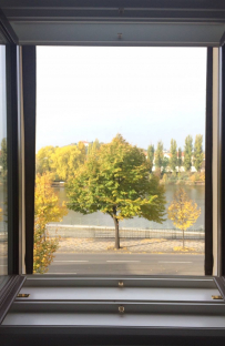 "I love the river view from our office and love watching how ""our"" tree changes as the seasons go by.."